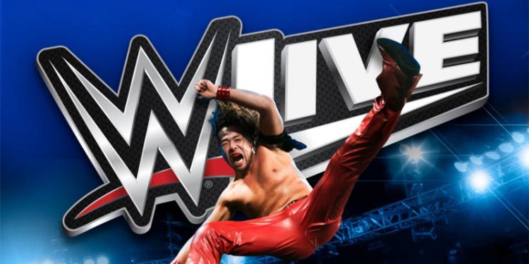 WWE Live! 2019